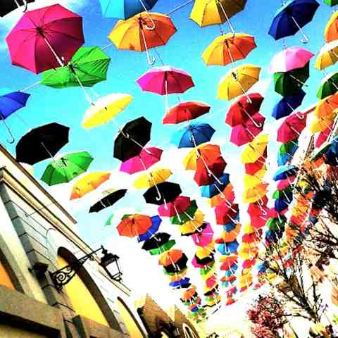 All colours of the umbrellas