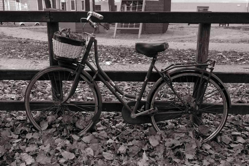 Stampe artistiche quadri e poster con autunno bicicletta for Leroy merlin stampe