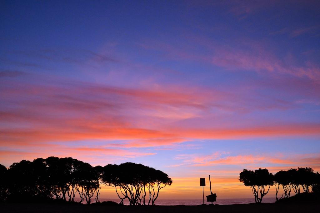 Stunning foto e poster con cielo natura tramonto with for Tende lilla glicine