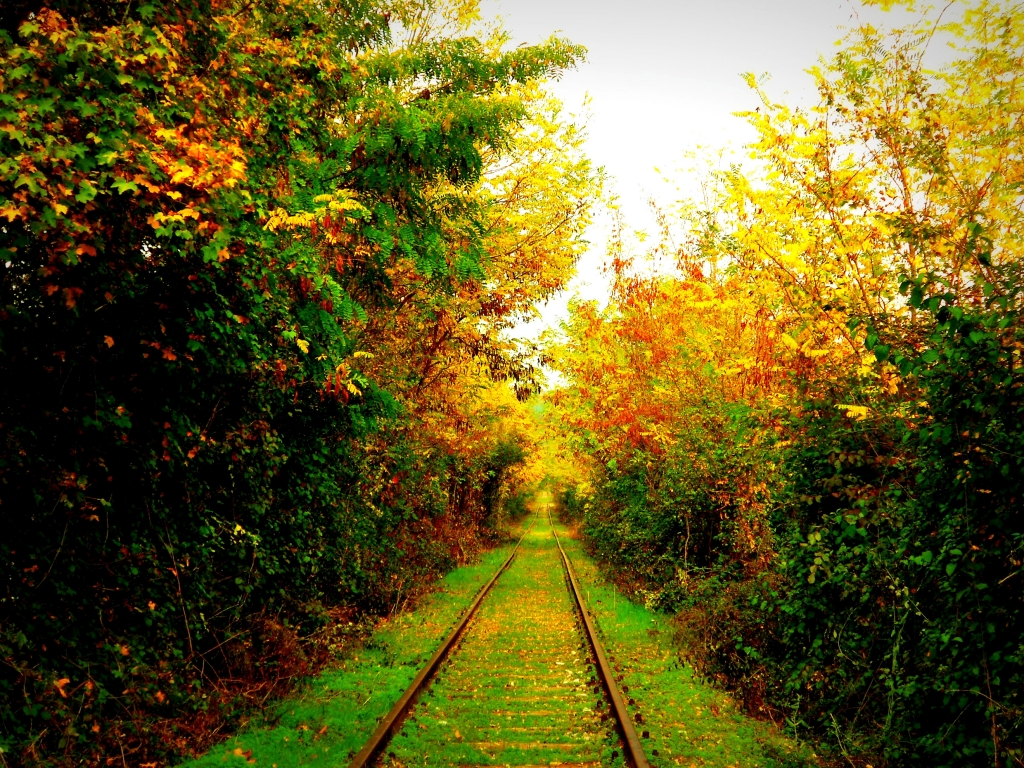 Stampe artistiche quadri e poster con atmosfera autunno binari foglie infinito luce - Caparezza l infinto la finestra ...