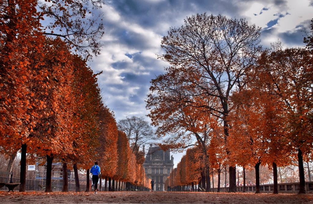 Stampe artistiche quadri e poster con autunno francia for Quadri di parigi