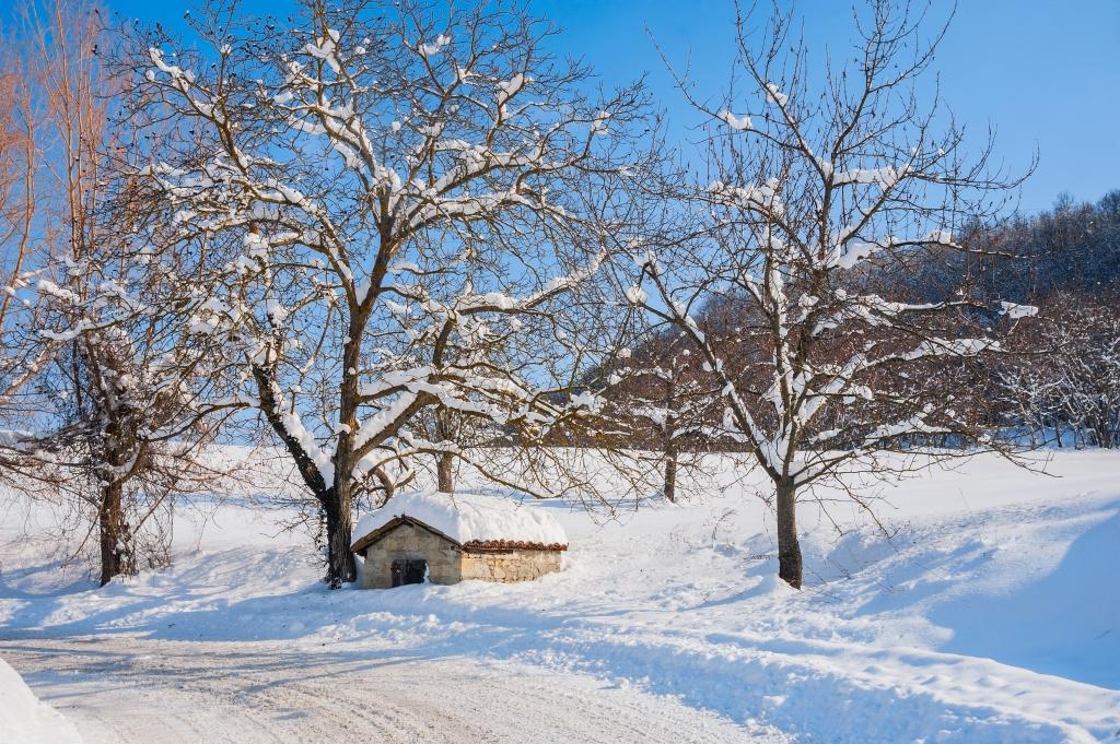 Stampe artistiche quadri e poster con inverno neve pace for Dipinti moderni bianco e nero