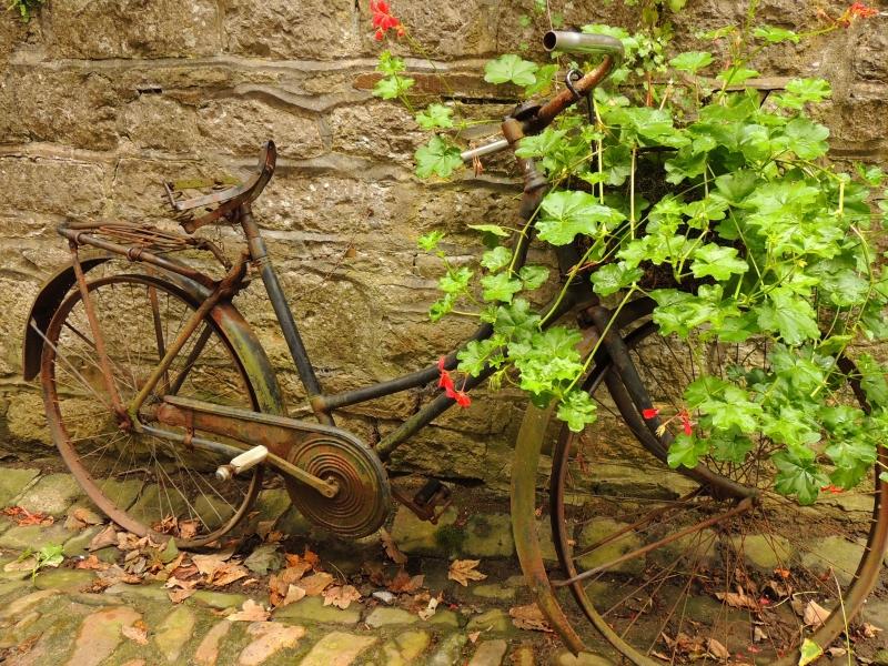 Stampe Artistiche Quadri E Poster Con Bicicletta Fiori Mezzi Di