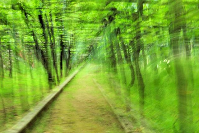 Soggiorno Verde Smeraldo: Soggiorno verde acqua suspended ...