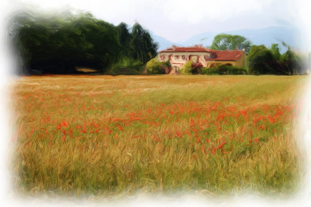Stampe artistiche quadri e poster con agricoltura campo for Stampe di campagna francese