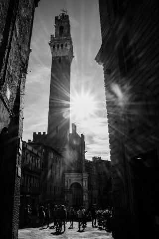 Siena in Backlight