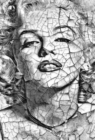 Quadro moderno e stampa - Porcelaine ( tribute to Marylin Monroe )
