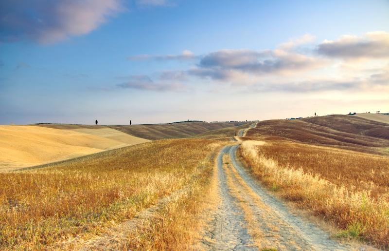 Stampe artistiche, quadri e poster con campagna toscana, colline ...