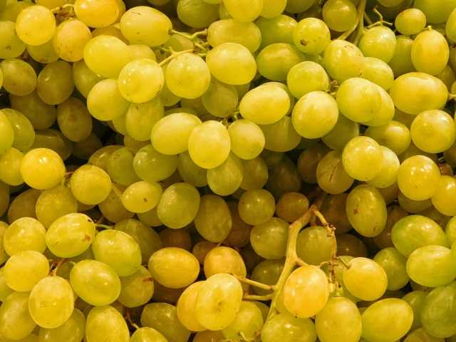 texture of grapes