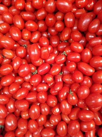 texture of tomatoes