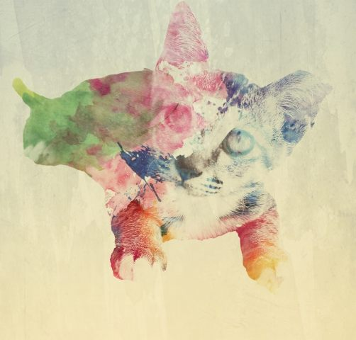 Kitty watercolor