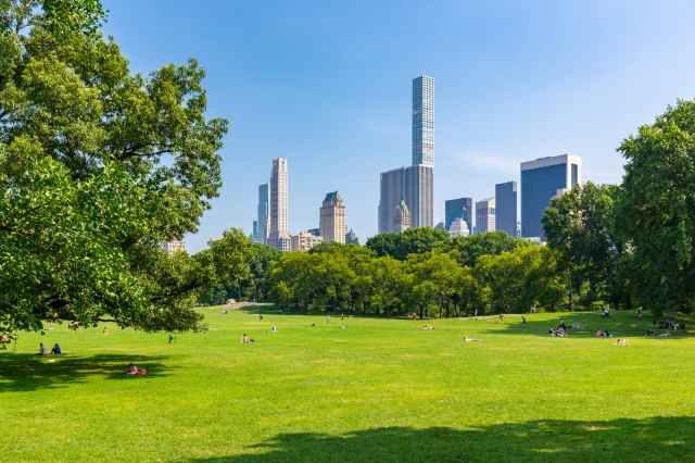 Una vista di Central Park - Manhattan - New York