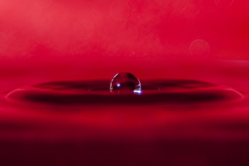 Quadro moderno, poster e stampa artistica con astratto, drop, drops, gocce, gocce d'acqua, red, red passion, water, water drop, water drop color, water drop photography