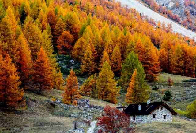 BAITA ALPINA COLORATA D'AUTUNNO